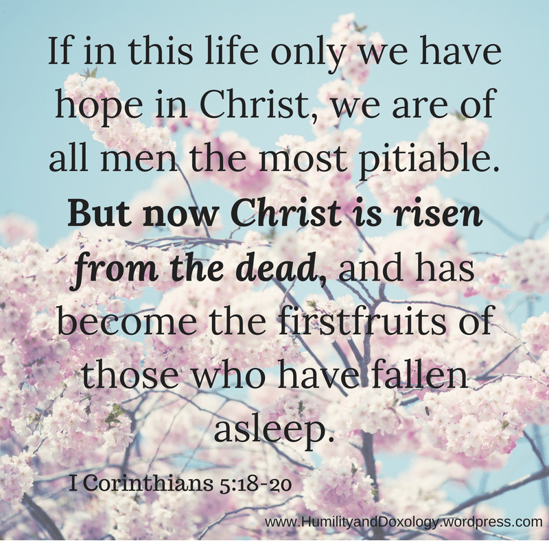 If in this life only we have hope in Christ, we are of all men the most pitiable.But now Christ is risen from the dead, and has become the firstfruits of those who have fallen asleep.