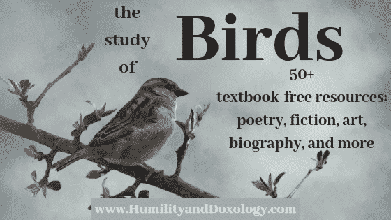 Homeschool Bird Study