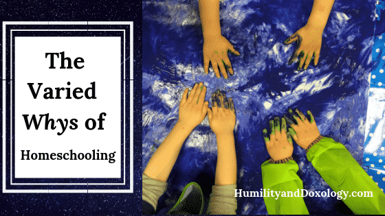 Varied Whys of Homeschooling