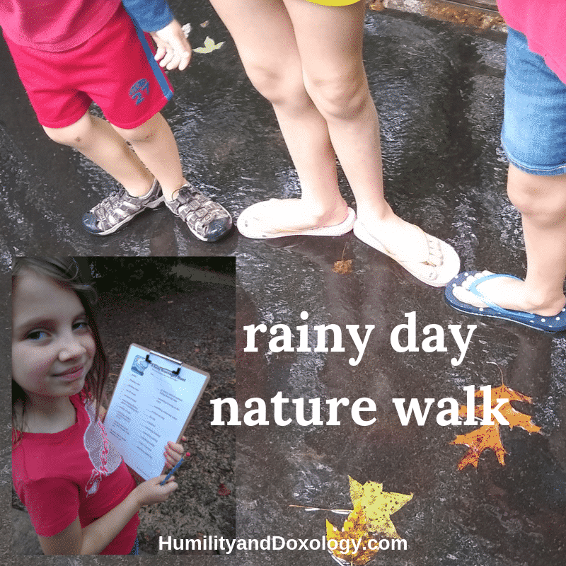 rainy day nature walk