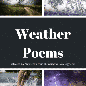 weather poems memory work collection