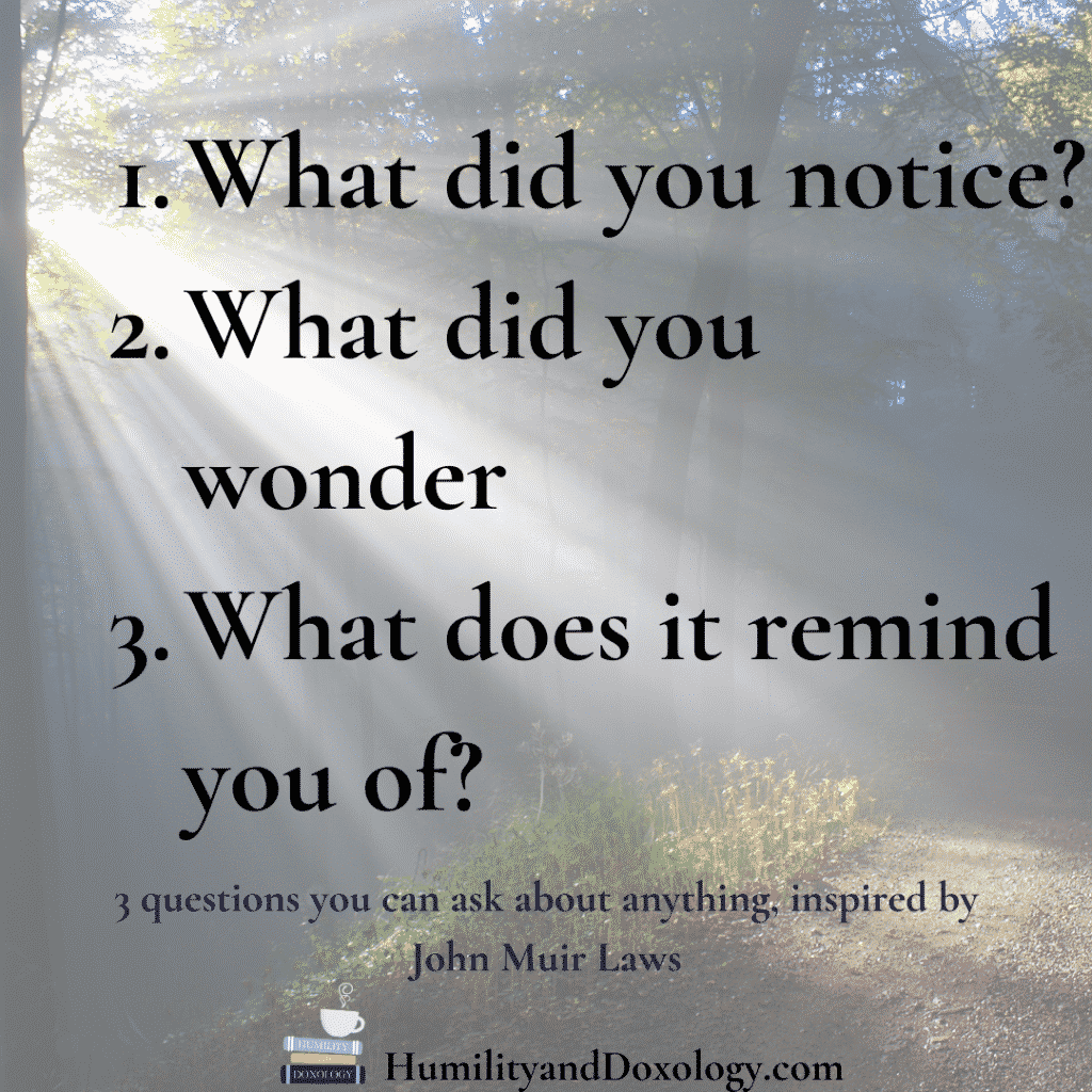 3 questions from John Muir Laws you can ask about anything