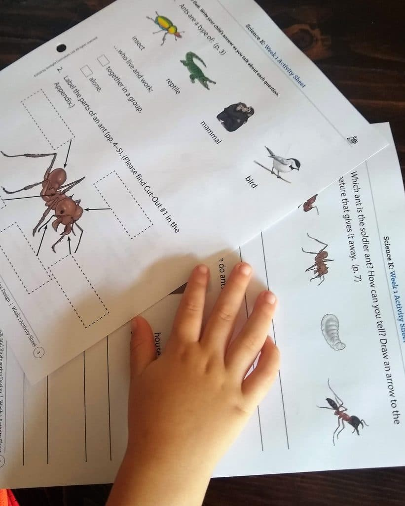 Sonlight Science K review Homeschool Curriculum Discover and Do Activity Sheets
